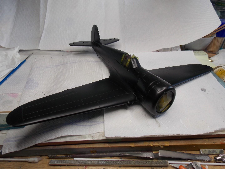 Hawk 2 001.jpg