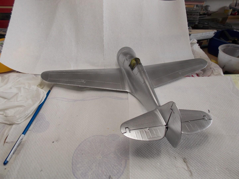 Hawk 2 005.jpg
