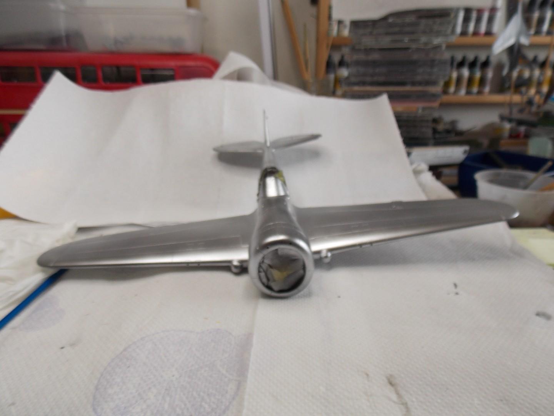 Hawk 2 007.jpg