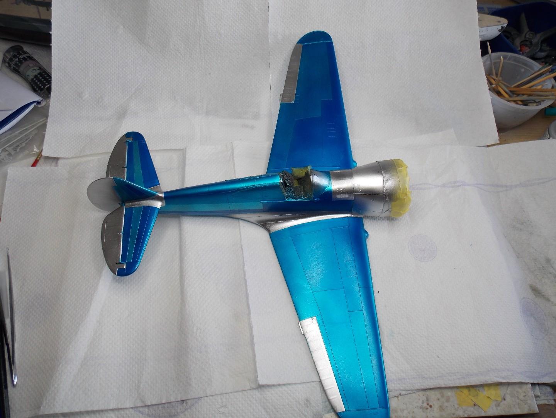 Hawk 4 016.jpg