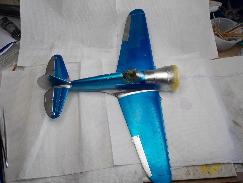 Hawk 4 017.jpg