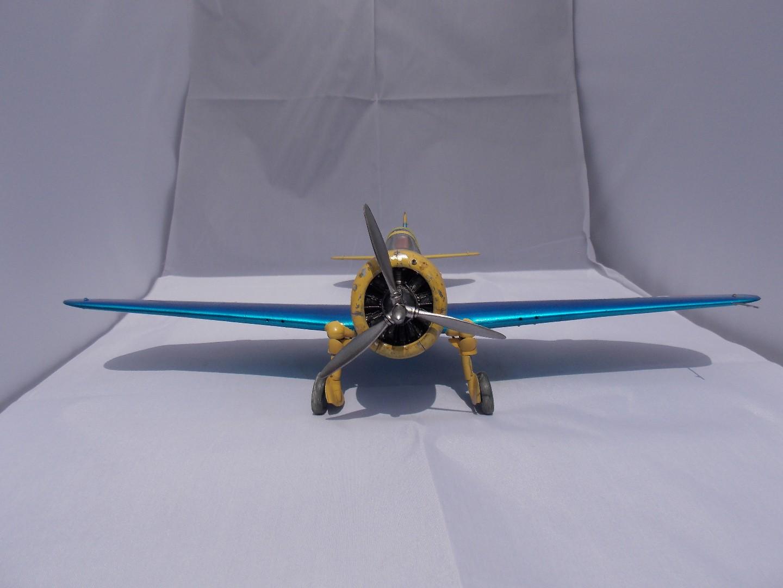 Hawk 8 003.jpg