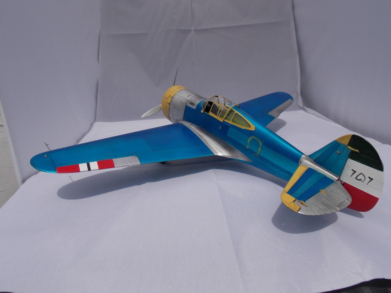 Hawk 8 006.jpg