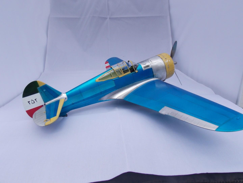 Hawk 8 008.jpg