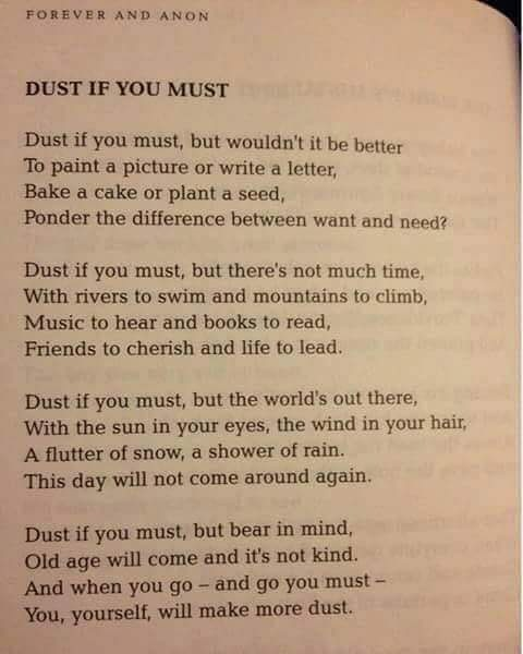 Click image for larger version - Name: dust if you must.jpg, Views: 25, Size: 43.87 KB