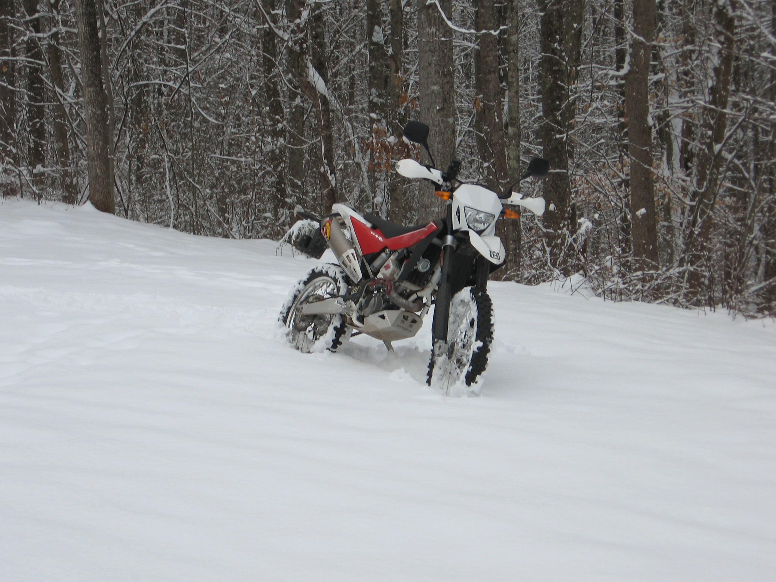 February 12 & 13 snow 010.JPG