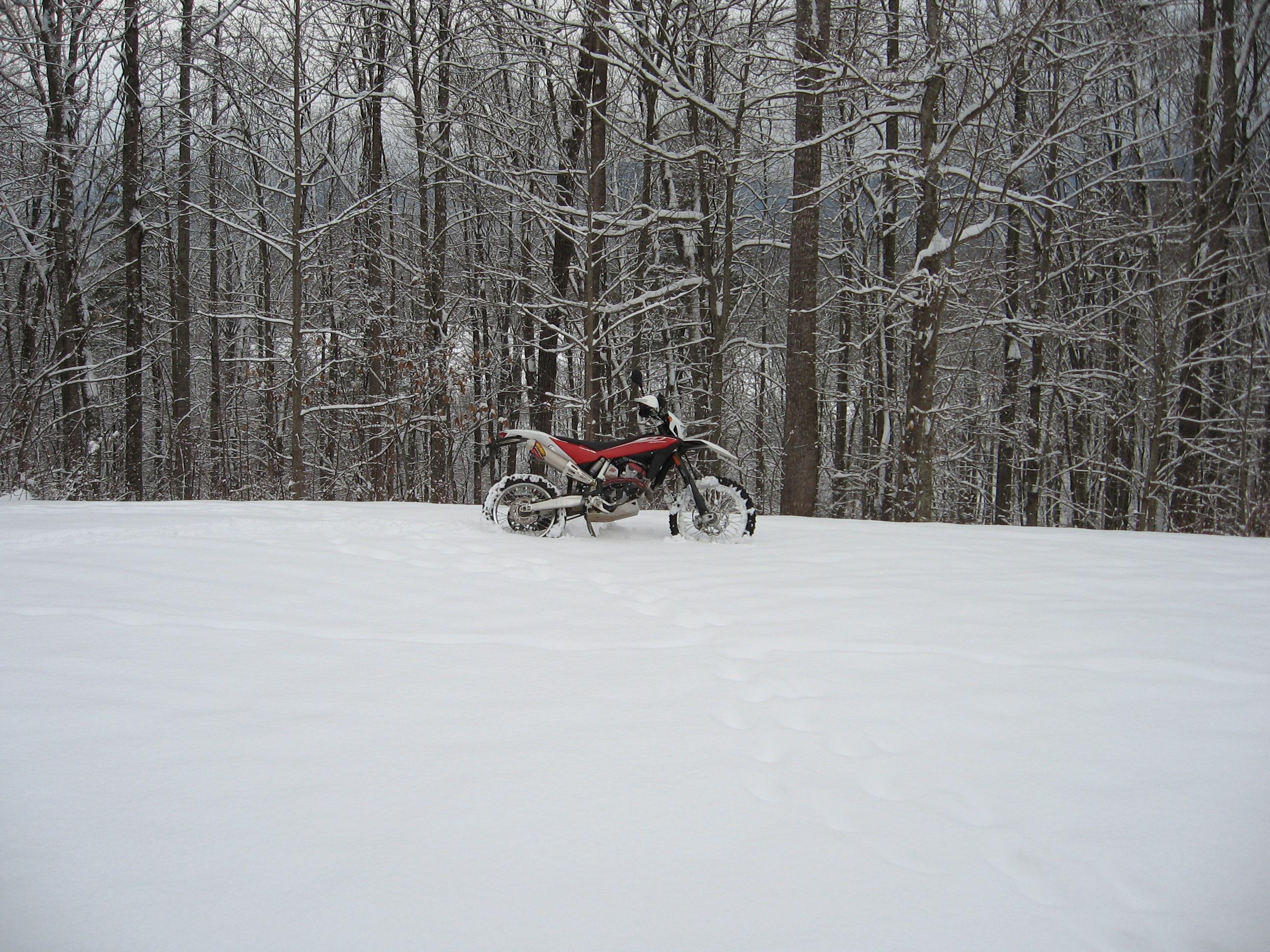 February 12 & 13 snow 012.JPG
