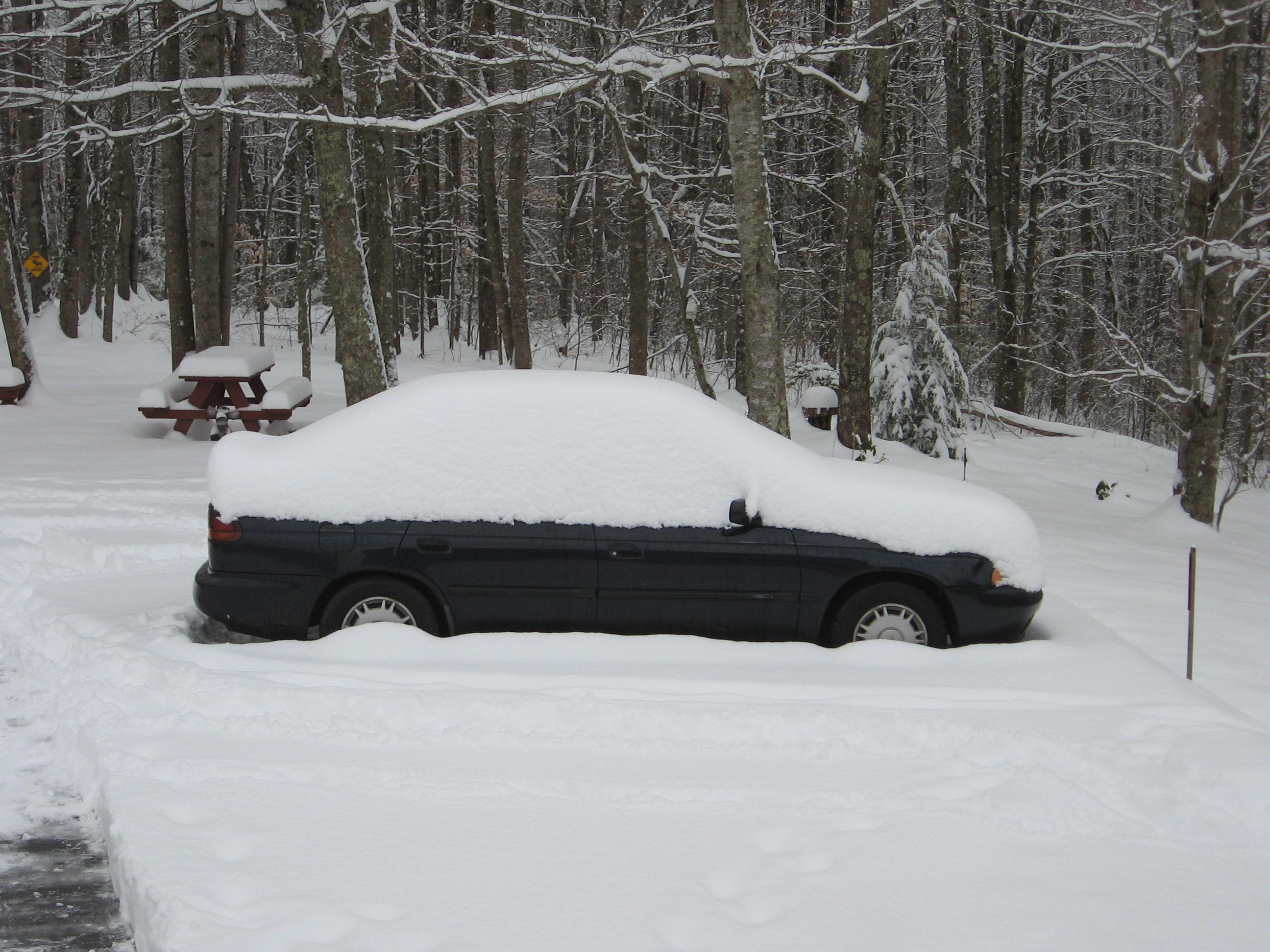 February 12 & 13 snow 003.JPG