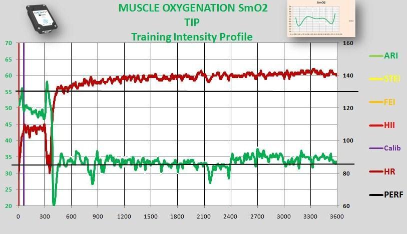 Mark workout HR SmO2.jpg
