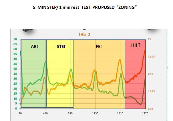 5 MIN step 1 min rest test  zoning prop.jpg