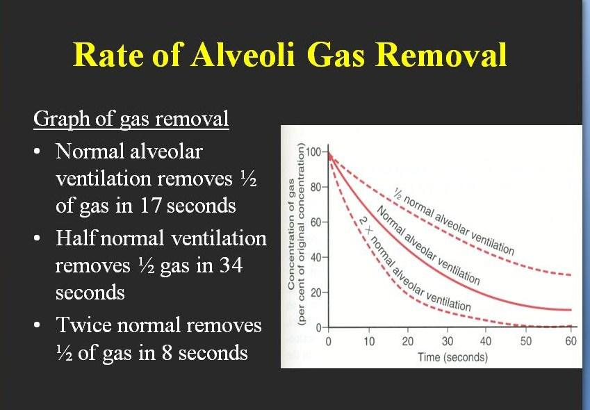 GAS EMOVAL RATE IN RESPIRATION.jpg