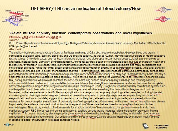 new  ideas on capillarisation.jpg
