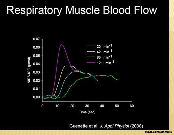 resp  muscel blod  flow.jpg