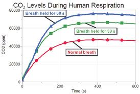 CO2 levels duirng holding breath.jpg