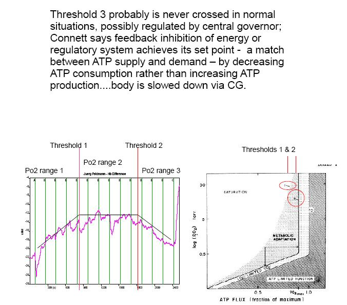 connett 3 thresholds.jpg