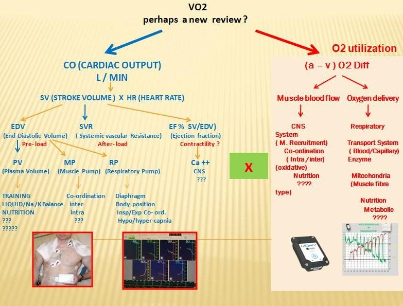 vo2  over all.jpg