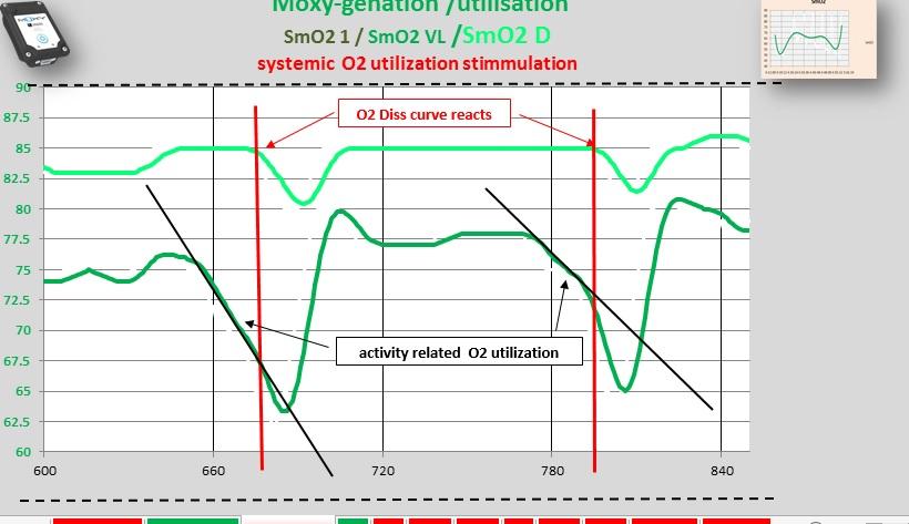 respiratory  O2  reaction systemic.jpg