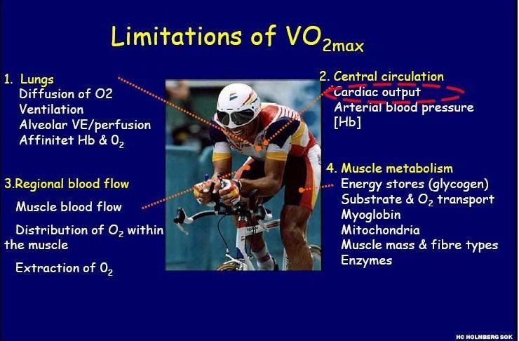 limitation of VO2.jpg