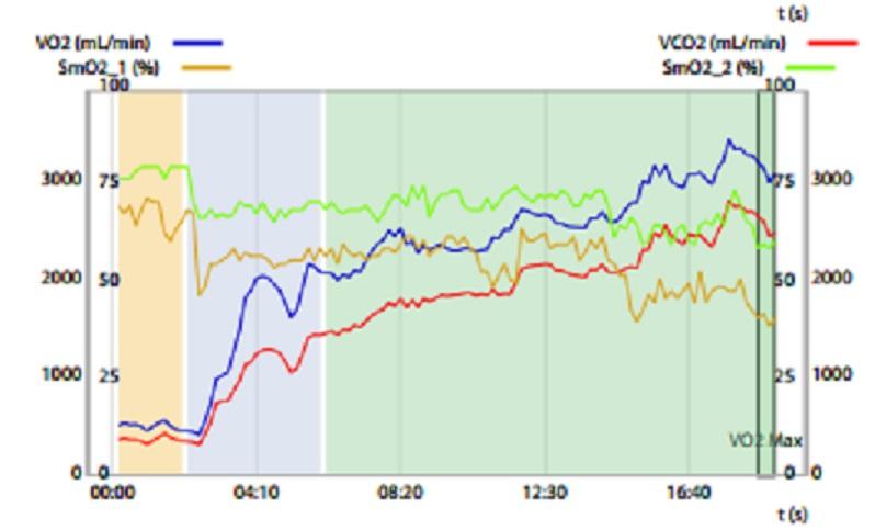 mathias   datas vo2l  SmO2  and VO2.jpg
