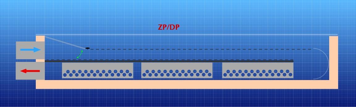 ZPDP.jpg