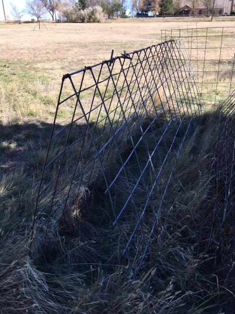 Wire frame, 102917.JPG