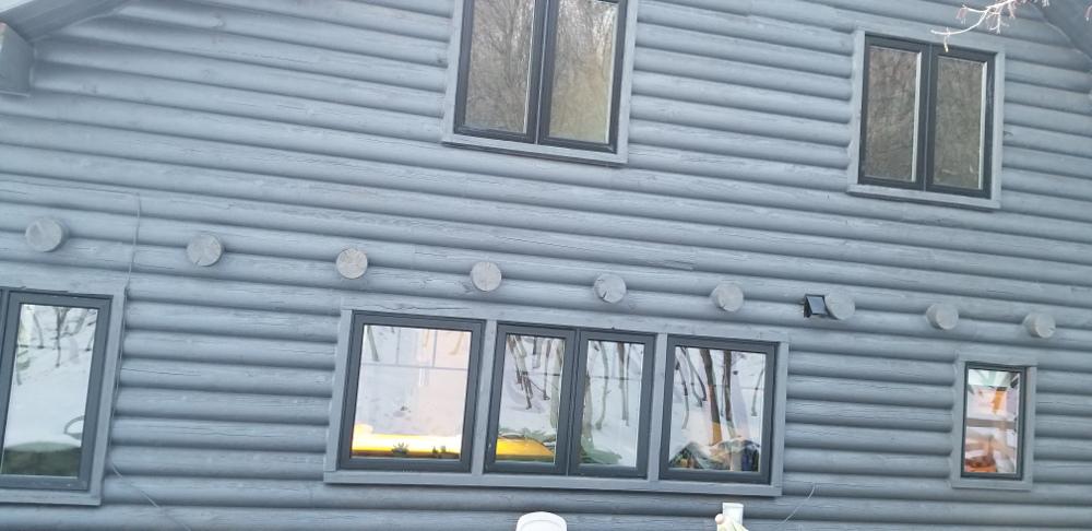 house back2.jpg
