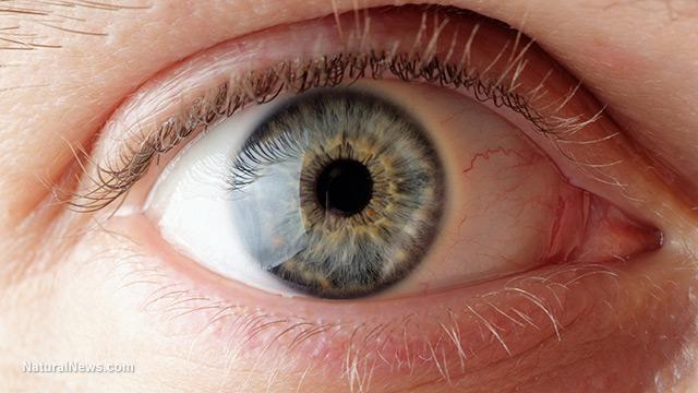 Close-Up-Eye-Ball-Iris-Pupil.jpg