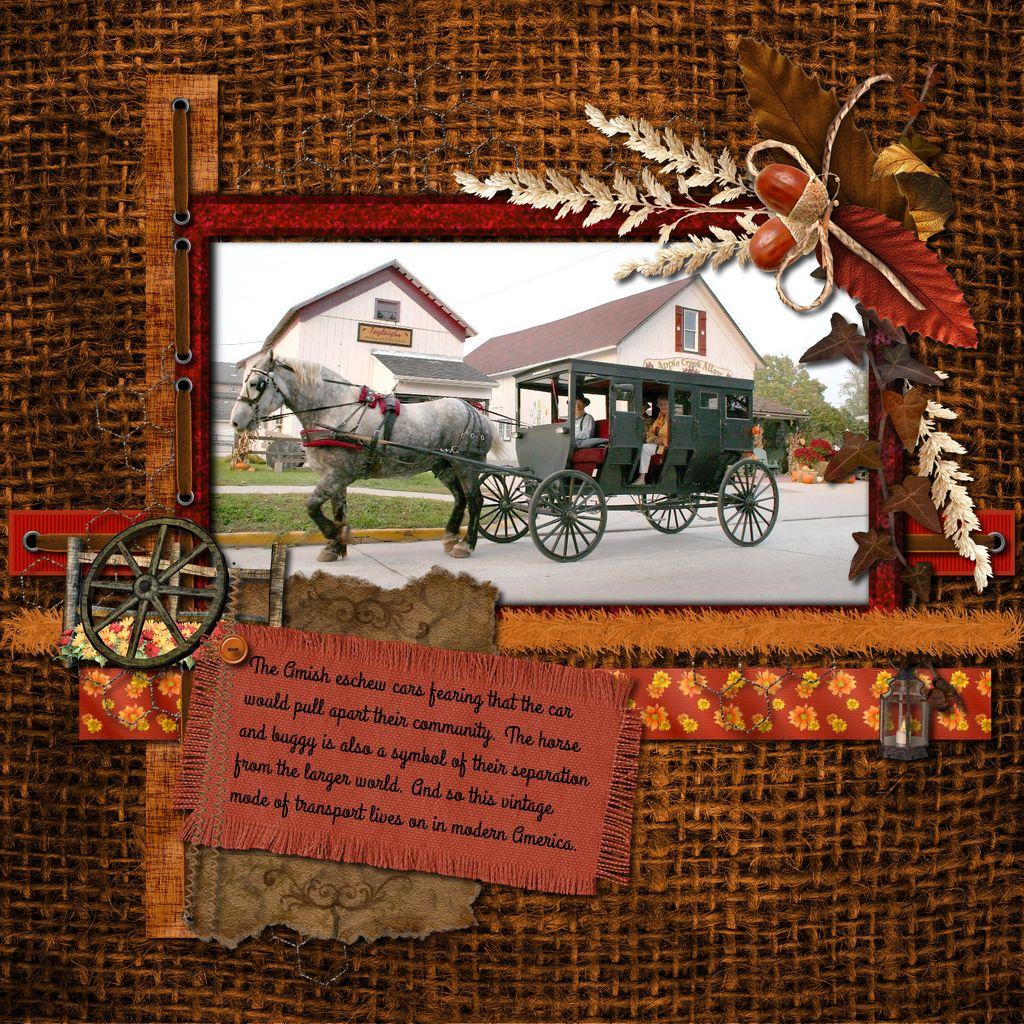1-NTD-Autumn-Falls-003-amish--callie-hand.jpg