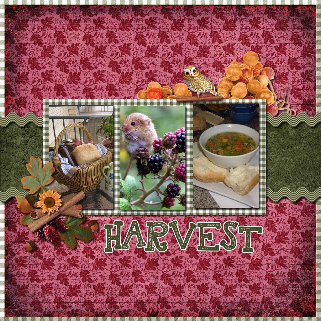 1-NTD-Harvest-Home-001-Page-1.jpg