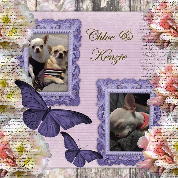 Chloe and kenzie2.jpg