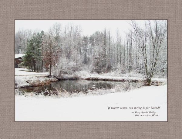 Winter (600 x 457).jpg