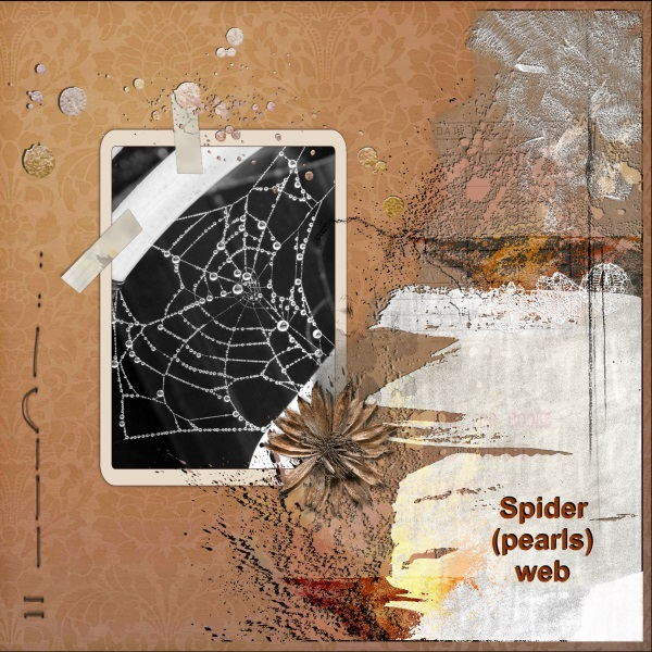 Oct. 2017 - Spider ( pearls) web.jpg