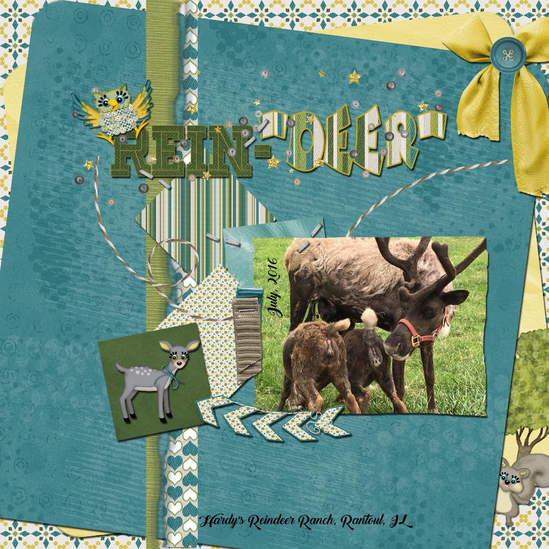 Rein-Deer_1.jpg