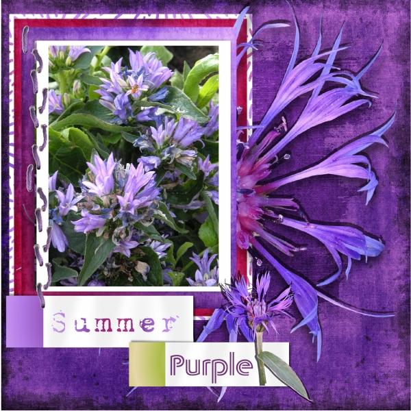 Aug.2018 - Summer purple.jpg