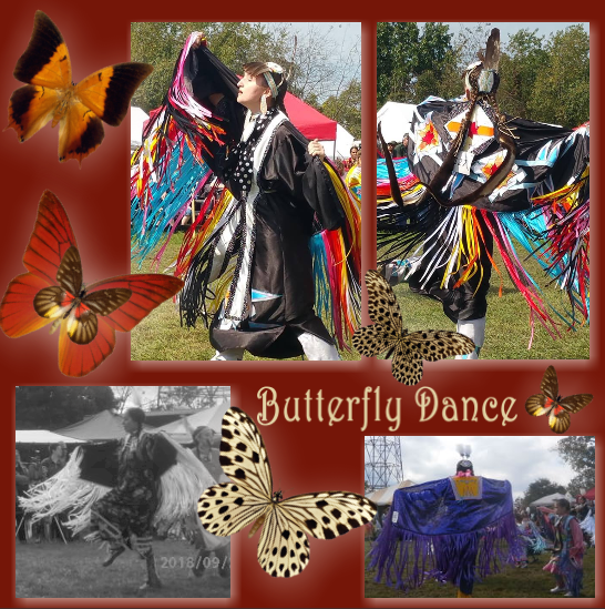 butterfly dance a.png