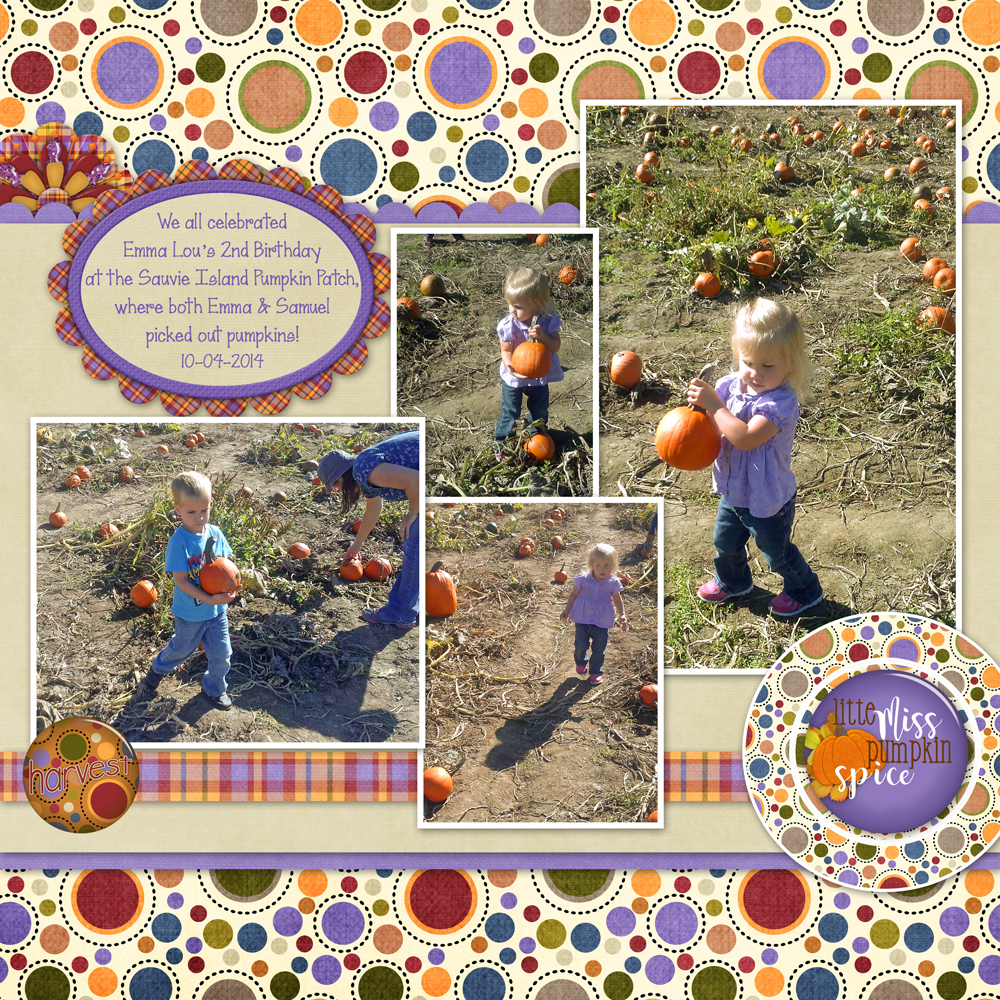 2014-10-04-Emma's-Birthday-4WEB1000.jpg