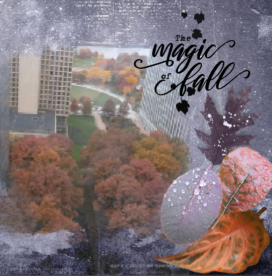 magic of fall.png