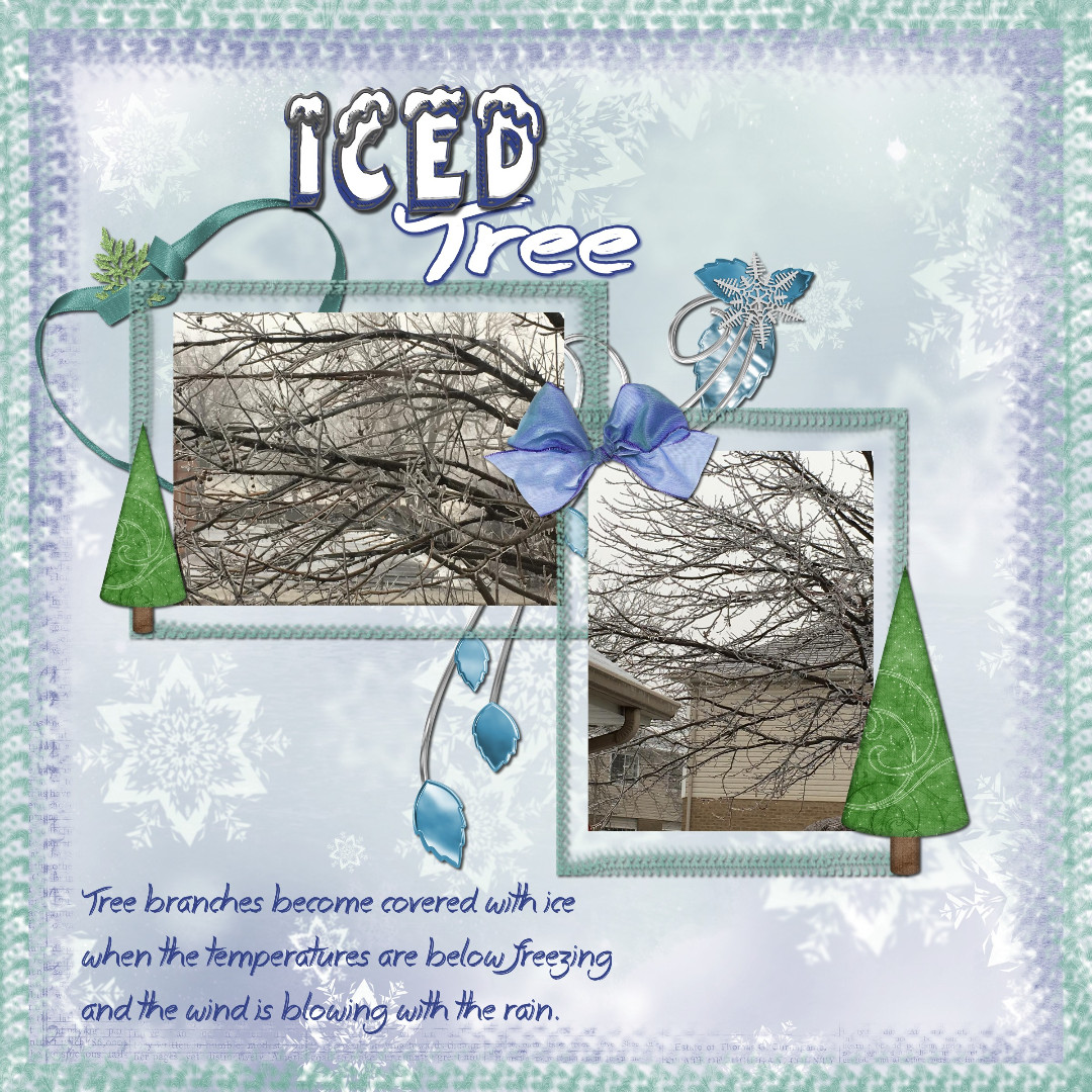 IcedTree.jpg