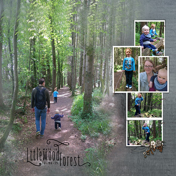 15_06_13_Littlewood-Forest-Walk_LHS_600x600.jpg