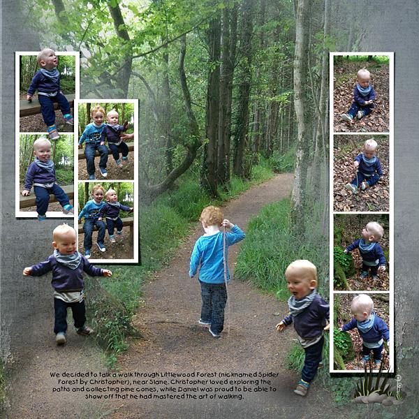 15_06_13_Littlewood-Forest-Walk_RHS_600x600.jpg