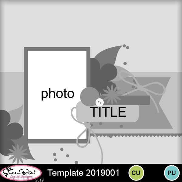 QBD_Template2019001.jpg