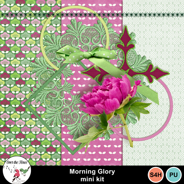 OTFD_MorningGlory_BTmar.jpg