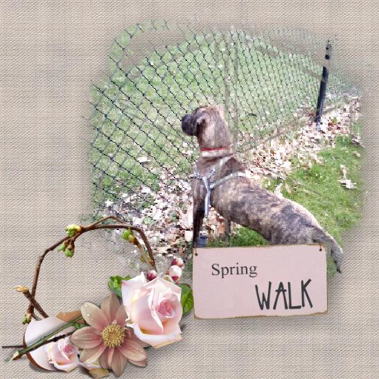 SPRING WALK2.png