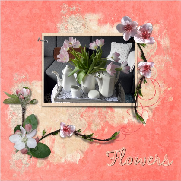 May 2019 - Flowers....jpg