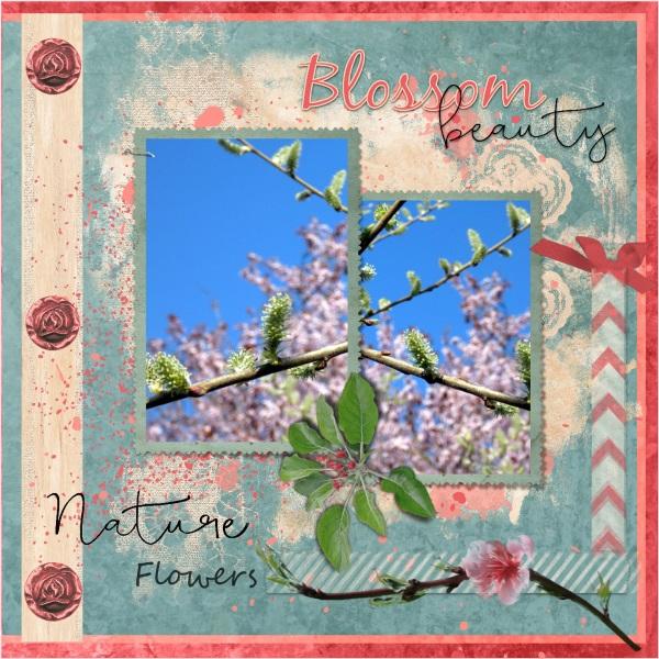 May 2019 Nature - Blossom...jpg