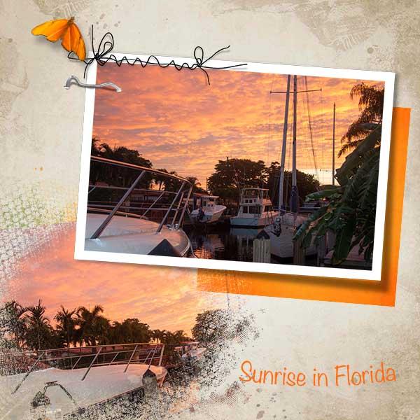 sunrise in florida .jpg