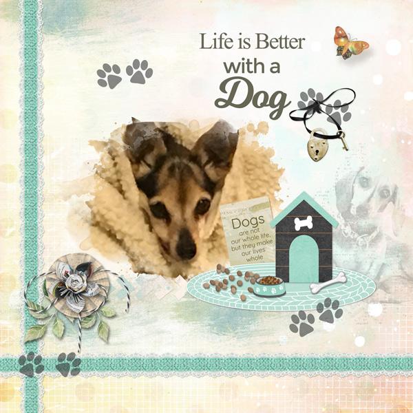 snickerdoodle-designs-love-my-dog-cathy-02-600.jpg