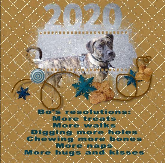 bo resolutions.jpg