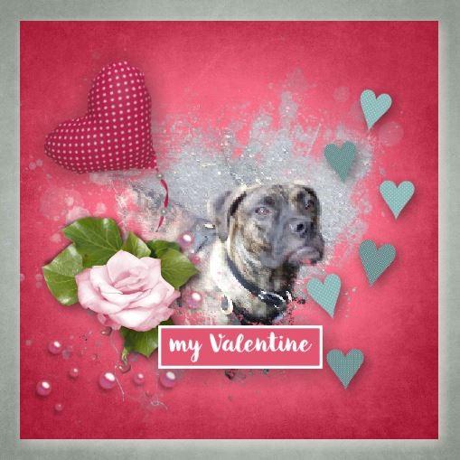 my valentine 2.jpg