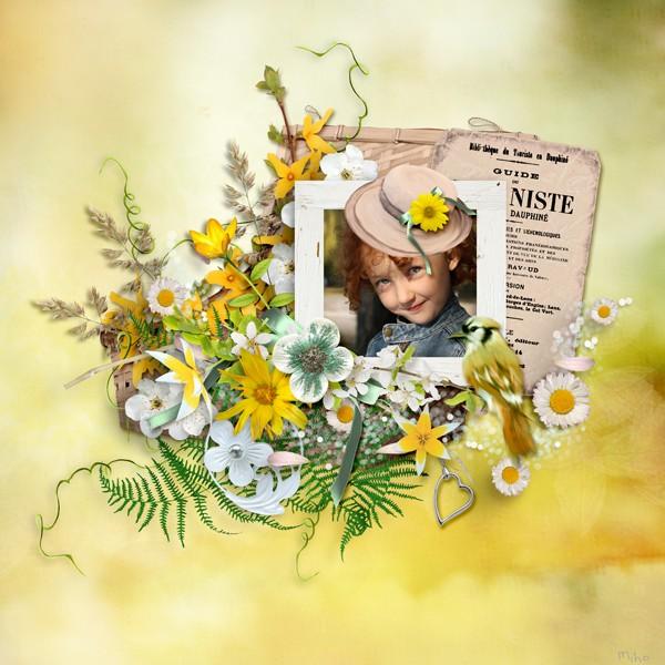 msp_fleurs_des_champs_1.jpg